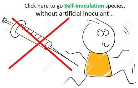 self-inoculant.jpg